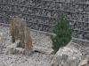 Ziersteine / Gneis 63-250 mm für Gabionenkörbe (Natursteine aus Polen)
