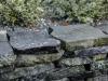 Polygonalplatten aus Serpentin - Serpentinit (Serpentin aus Polen),Platten für den Garten- und Landschaftsbau, Gehwegplatten, Abdeckplatten, Polygonalplatten, Terrassenplatten, Naturstein aus Polen, unterschiedliche Farben, Formate