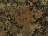 Baltic Brown- Naturstein für den Garten und für das Haus, Natursteinplatten