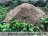 Steine Nr. 7 - Maße: ca. 140x130x80 cm, Gewicht - ca. 4,5 Tonnen /Stck.